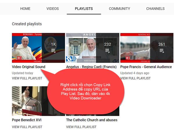 Download các videos bằng 4K Video Downloader - 3