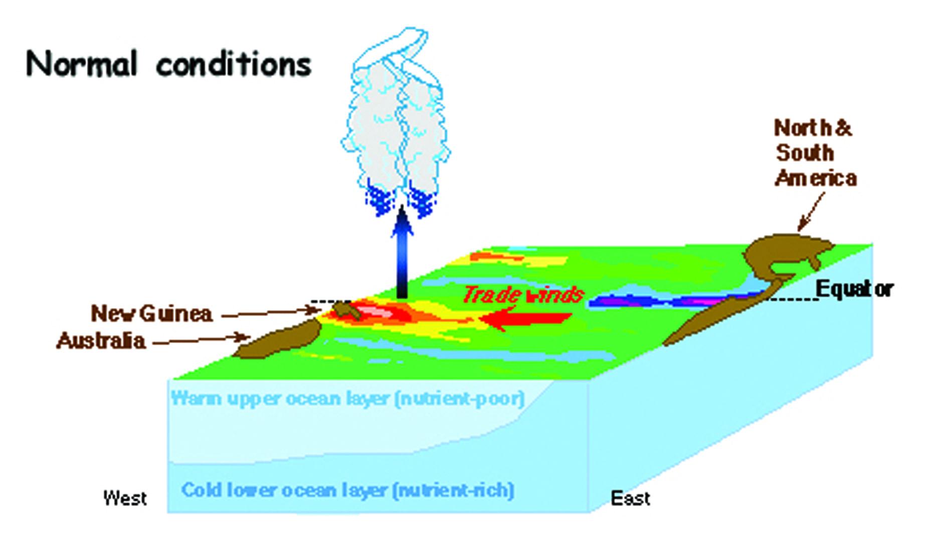 Hiện tượng El Niño ảnh hưởng tới thời tiết như thế nào? - 2