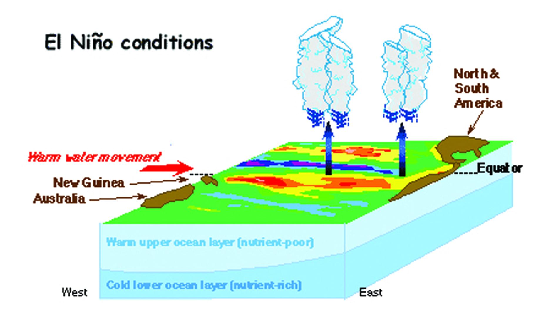 Hiện tượng El Niño ảnh hưởng tới thời tiết như thế nào? - 3