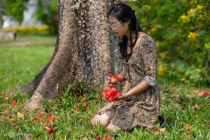 Huế mùa hoa gạo - 5
