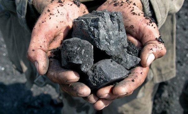 Than đá được hình thành như thế nào? - 3
