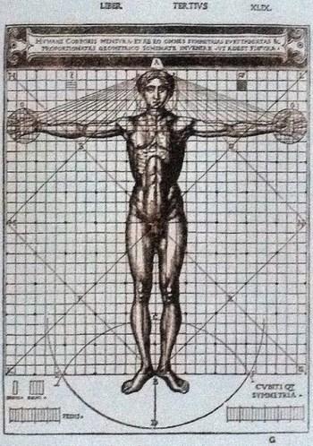 """""""Vitruvian Man"""" của Leonardo Da Vinci và tỉ lệ hoàn mỹ - 6"""
