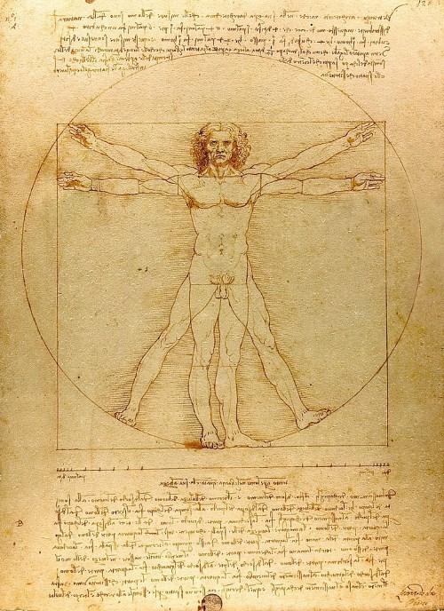 """""""Vitruvian Man"""" của Leonardo Da Vinci và tỉ lệ hoàn mỹ - 1"""