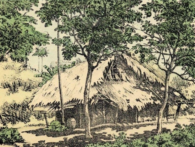 Bộ tranh vẽ cuộc sống người Việt vào thập niên 1930 - 6