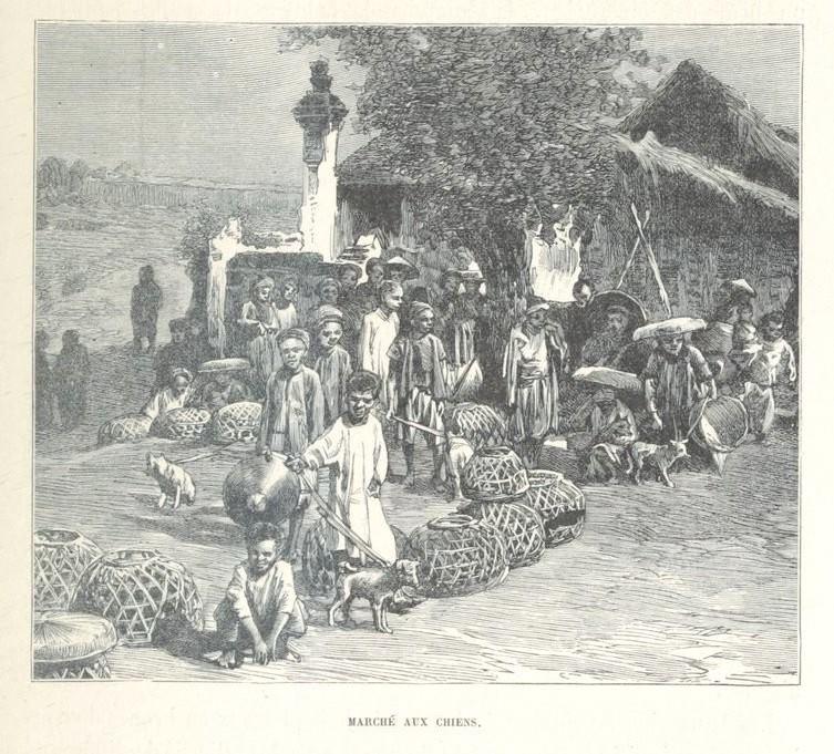 Loạt tranh minh họa về cuộc sống Việt Nam những năm 1884-1885 - 27