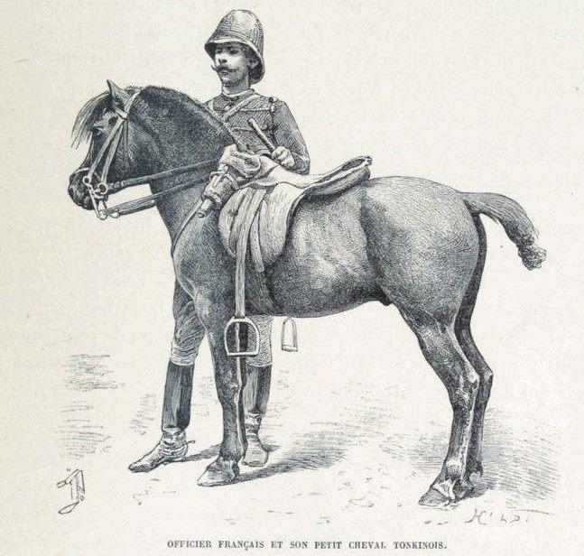 Loạt tranh minh họa về cuộc sống Việt Nam những năm 1884-1885 - 24