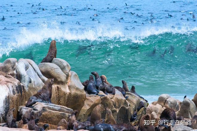 Bờ biển Skeleton: bờ biển nguy hiểm nhất thế giới - 14