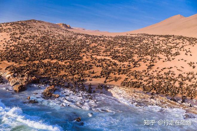 Bờ biển Skeleton: bờ biển nguy hiểm nhất thế giới - 15